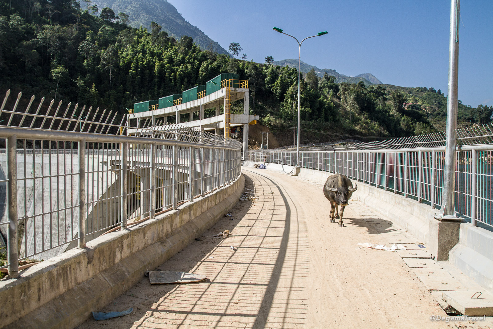 A cow crossing the dam at the end of the Mường Hoa Valley near Sapa, Vietnam