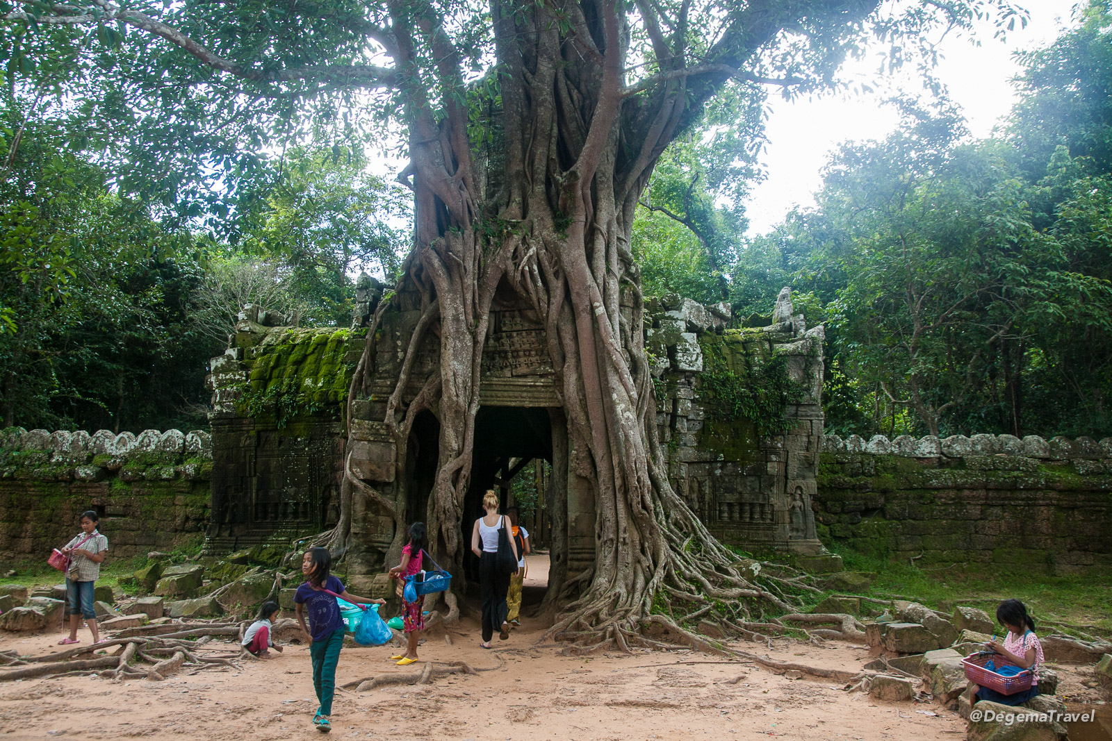 Overgrown temple in the Angkor Archaeological Park near Siem Reap, Cambodia